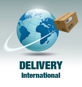 Playmobil International delivery